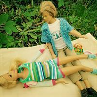 Весенний пикник