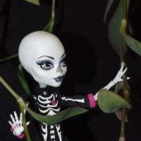 Забытая Скелета