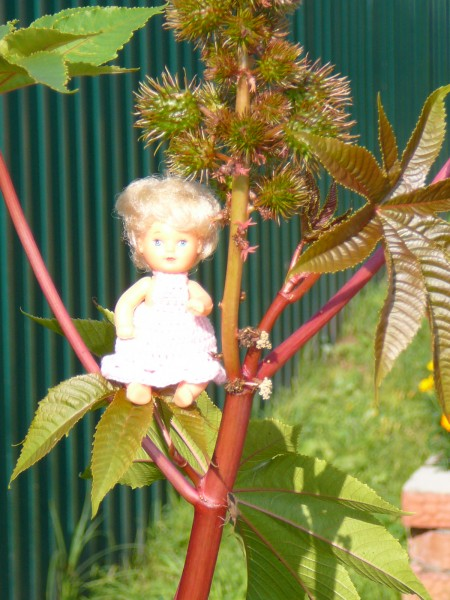 Кукла Ханако