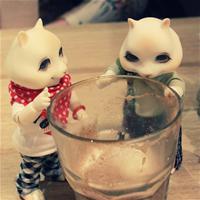 Бурундуки в кафе