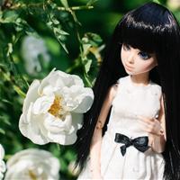 Цветы и подружки