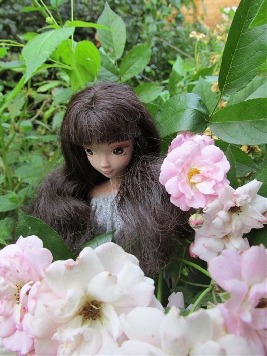 Кукла Бранвен