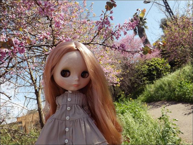 Кукла Blythe - Vinter Arden