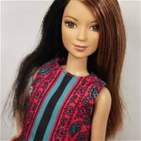 Barbie Fashionistas #41 Pretty in Paisley