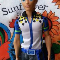 Кен из Виртуального мира.