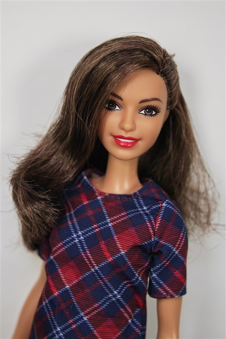 Кукла Barbie Fashionistas #52 Plaid on Plaid