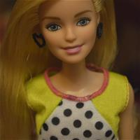 Barbie Fashionistas #13